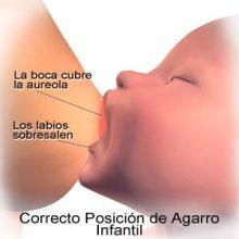 El buen agarre en la lactancia previene las grietas del pezón