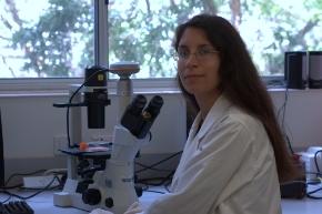 Células madre en la leche materna, probado