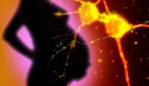 La cesárea afecta al cerebro del bebé - cesáreas programadas