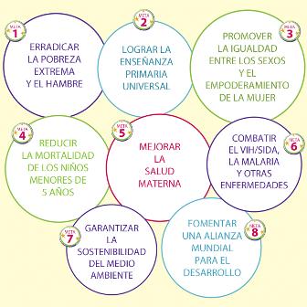 objetivos-milenio-smlm-2014-web