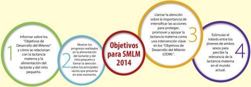 objetivos-smlm-2014